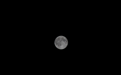 The full moon on a clear night wallpaper