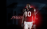 Andre Johnson wallpaper 1920x1200 jpg