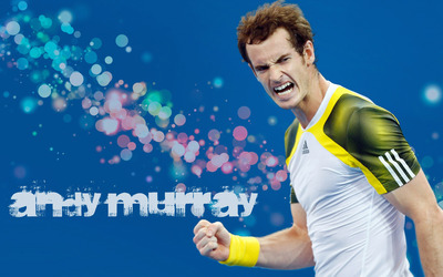 Andy Murray [3] wallpaper