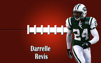 Darelle Revis wallpaper 2560x1600 jpg