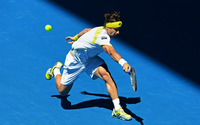 David Ferrer wallpaper 1920x1200 jpg