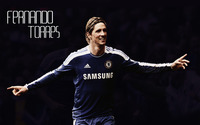 Fernando Torres wallpaper 2560x1600 jpg
