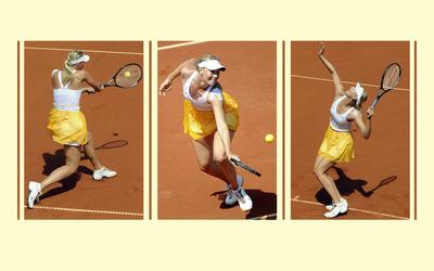 Maria Sharapova [35] wallpaper