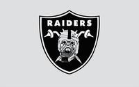Oakland Raiders wallpaper 2560x1600 jpg