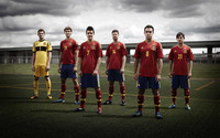 Spain national football team 2012 wallpaper 2560x1600 jpg
