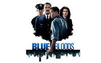 Blue Bloods main characters wallpaper 2560x1600 jpg