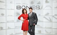 Bones [10] wallpaper 1920x1200 jpg
