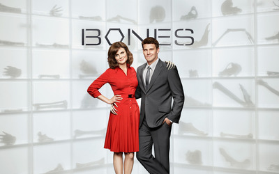 Bones [10] wallpaper