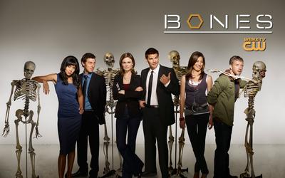 Bones [5] wallpaper