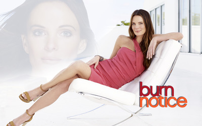 Burn Notice [5] wallpaper