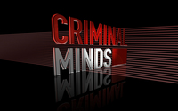 Criminal Minds [2] wallpaper 1920x1200 jpg