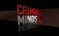 Criminal Minds [2] wallpaper 1920x1200 jpg