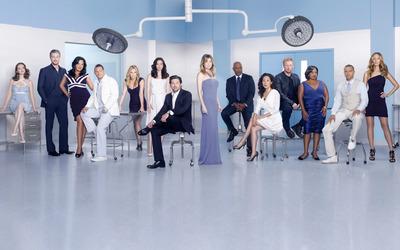 Grey's Anatomy [5] wallpaper