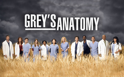 Grey's Anatomy [7] wallpaper