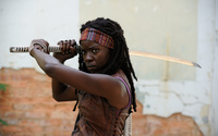 Michonne - Walking Dead wallpaper 2560x1600 jpg