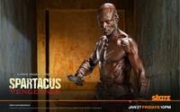 Oenomaus - Spartacus: Vengeance wallpaper 1920x1200 jpg