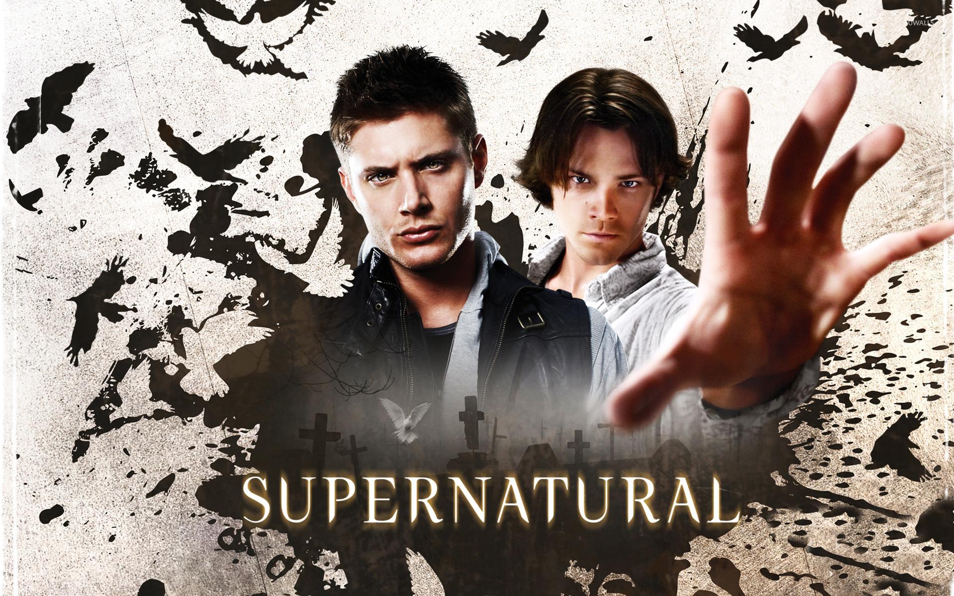 Supernatural 8 wallpaper tv show wallpapers 15005 supernatural 8 wallpaper voltagebd Image collections