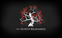 The North Remembers wallpaper 1920x1200 jpg