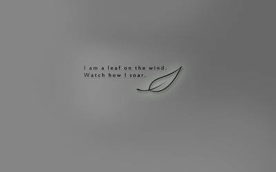 Leaf on the wind wallpaper