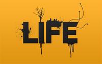 Life wallpaper 1920x1200 jpg