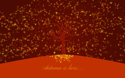 Autumn is here wallpaper