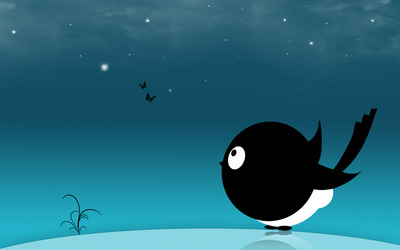 Bird in the night wallpaper