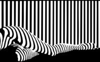 Black and white stripes on legs wallpaper 3840x2160 jpg