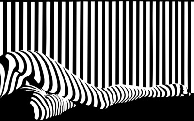 Black and white stripes on legs wallpaper