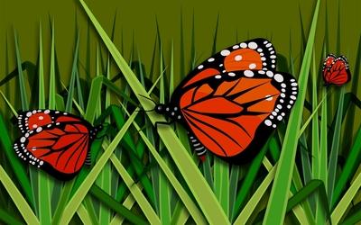 Butterflies [12] wallpaper