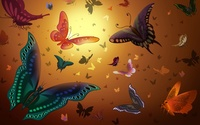 Butterflies [3] wallpaper 1920x1200 jpg