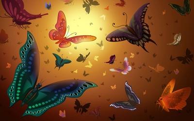 Butterflies [3] wallpaper