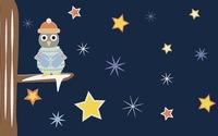 Cozy Owl wallpaper 1920x1080 jpg