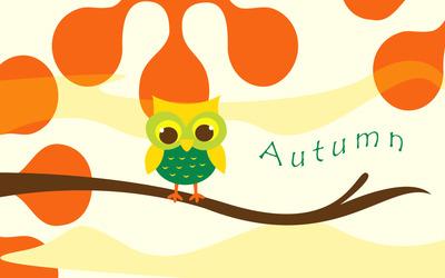 Cute owl on a branch wallpaper