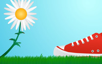 Daisy and a red sneaker wallpaper 1920x1200 jpg