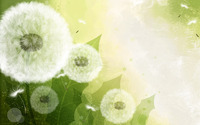 Dandelions wallpaper 1920x1200 jpg