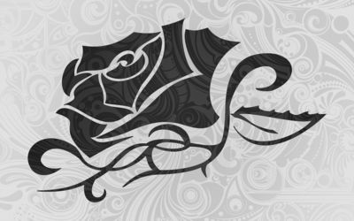 Dark rose wallpaper