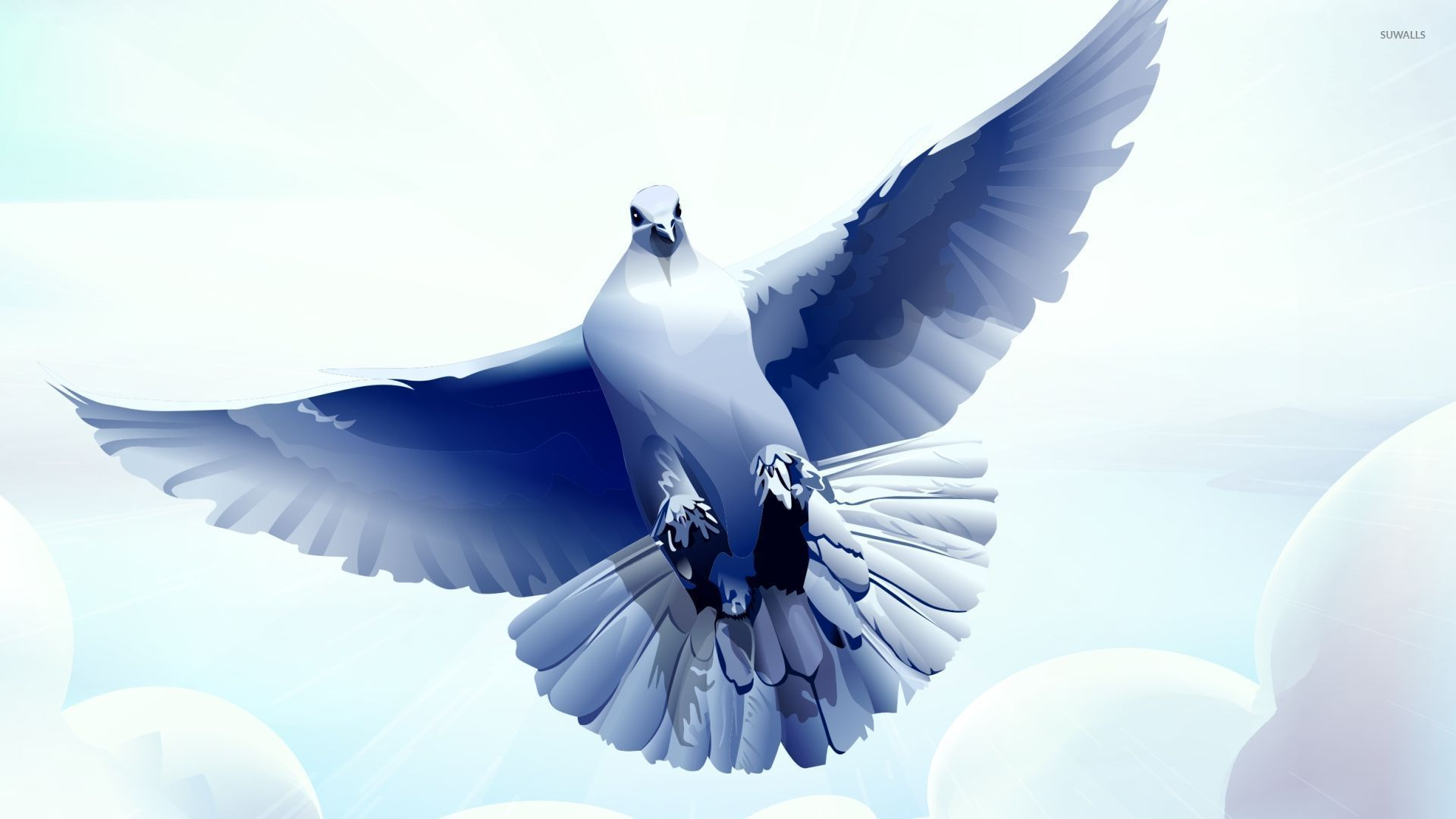Dove with wings spread wallpaper Vector wallpapers 52086