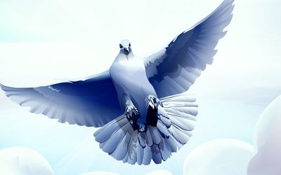 Dove with wings spread wallpaper