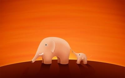 Elephants in the sunset wallpaper