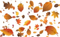 Falling leaves wallpaper 2880x1800 jpg
