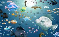 Fish wallpaper 2560x1600 jpg