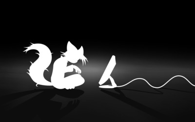 Fox silhouette in front of a computer wallpaper