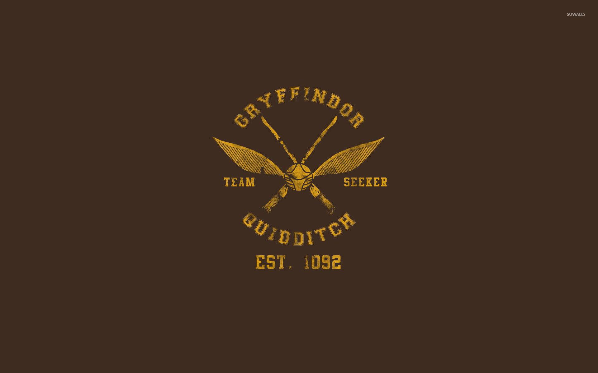 Gryffindor Quidditch Team Wallpaper Vector Harry Potter