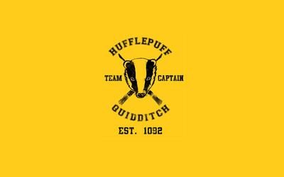 Hufflepuff Quidditch team - Harry Potter wallpaper