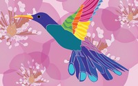 Hummingbird [6] wallpaper 2560x1600 jpg