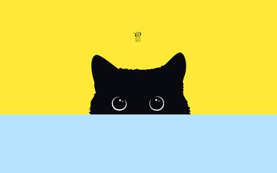 Black cat hiding wallpaper