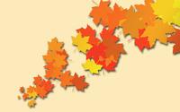 Leaves [17] wallpaper 2880x1800 jpg