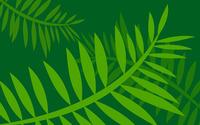 Leaves [18] wallpaper 2560x1600 jpg