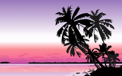 Palm trees at sunset wallpaper
