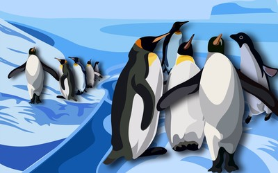 Penguins [3] wallpaper